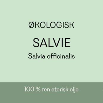 Salvie - Økologisk