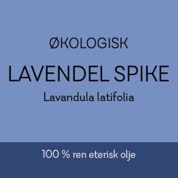 Duftapoteket-LAVENDEL SPIKE ØKO-Lavandula latifolia