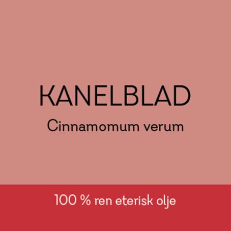 Duftapoteket-KANELBLAD-Cinnamomum verum
