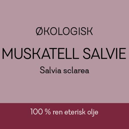 Duftapoteket-MUSKATELL SALVIE-Salvia sclarea