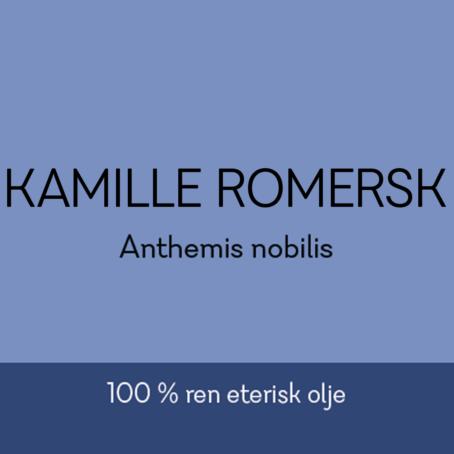 Duftapoteket-KAMILLE-ROMERSK-Anthemis nobilis