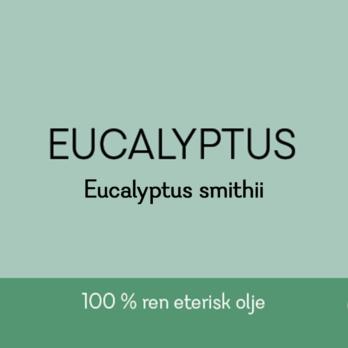 Duftapoteket-EUCALYPTUS-Eucalyptus smithii