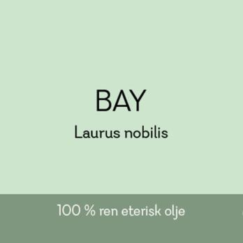 Duftapoteket-BAY-Laurus nobilis