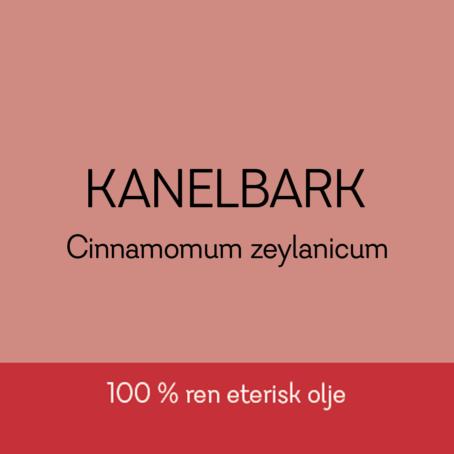 Duftapoteket-KANELBARK-Cinnamomum zeylonicum